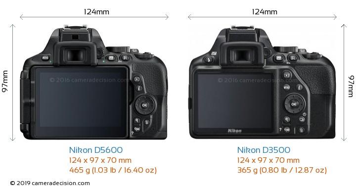 Nikon D5600 vs Nikon D3500 Camera Size Comparison - Back View
