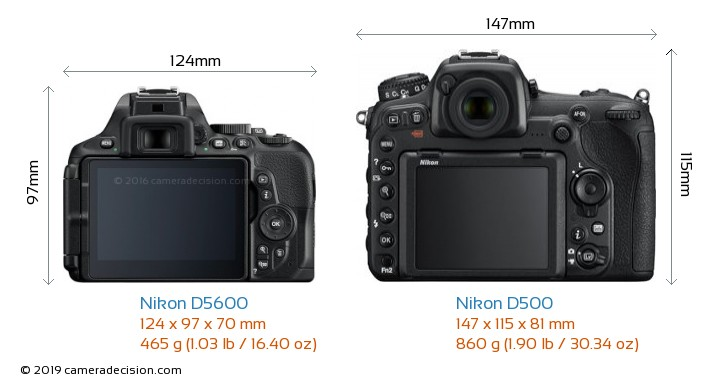 Nikon D5600 vs Nikon D500 Camera Size Comparison - Back View