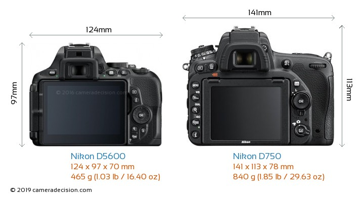 Nikon D5600 vs Nikon D750 Camera Size Comparison - Back View
