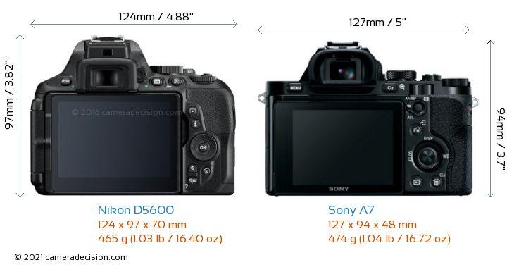 Nikon D5600 vs Sony A7 Camera Size Comparison - Back View