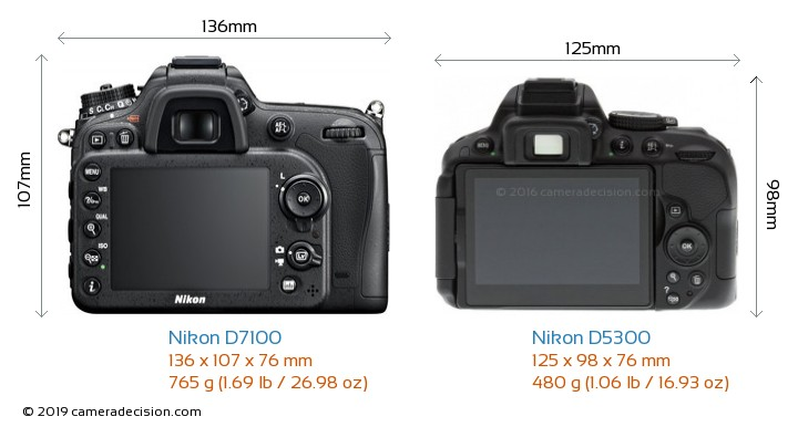 Nikon D7100 vs Nikon D5300 Camera Size Comparison - Back View