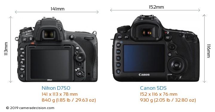 Nikon D750 vs Canon 5DS Camera Size Comparison - Back View
