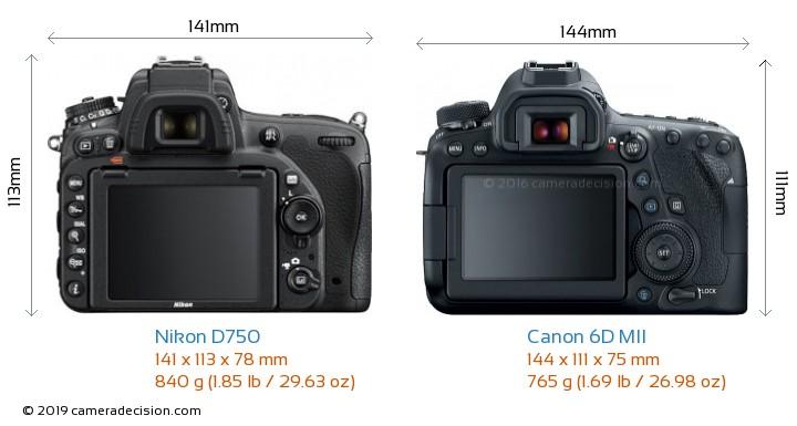 Nikon D750 vs Canon 6D MII Camera Size Comparison - Back View