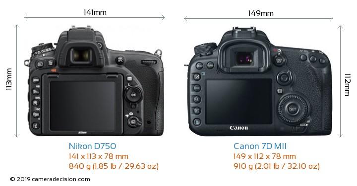Nikon D750 vs Canon 7D MII Camera Size Comparison - Back View