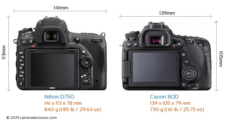 Nikon D750 vs Canon 80D Camera Size Comparison - Back View