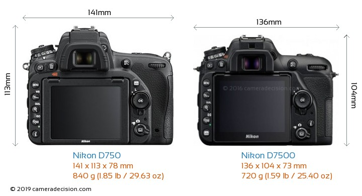 Nikon D750 vs Nikon D7500 Camera Size Comparison - Back View