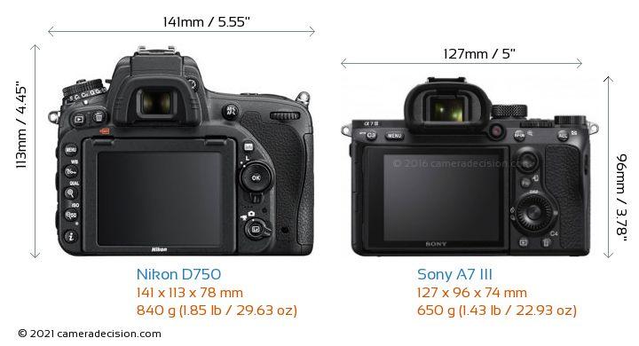 Nikon D750 vs Sony A7 III Camera Size Comparison - Back View