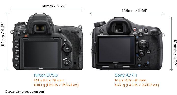 Nikon D750 vs Sony A77 II Camera Size Comparison - Back View