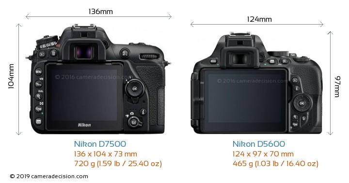 Nikon D7500 vs Nikon D5600 Camera Size Comparison - Back View