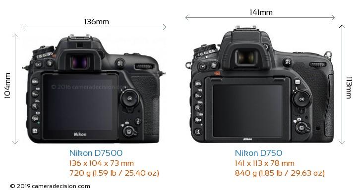 Nikon D7500 vs Nikon D750 Camera Size Comparison - Back View