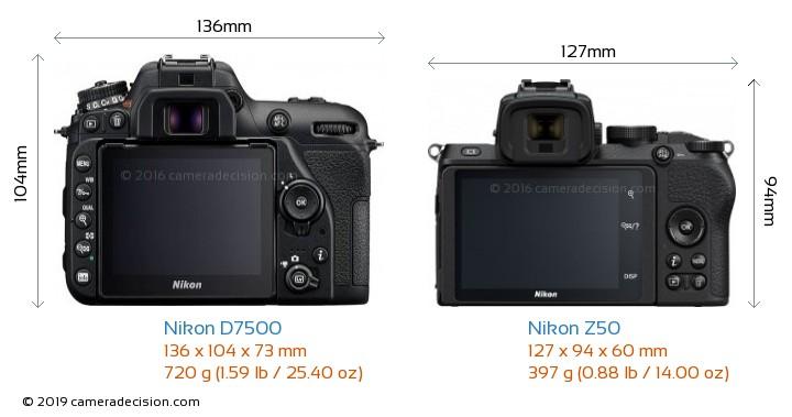 Nikon D7500 vs Nikon Z50 Camera Size Comparison - Back View