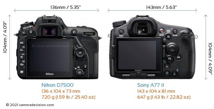 Nikon D7500 vs Sony A77 II Camera Size Comparison - Back View