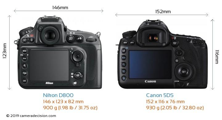 Nikon D800 vs Canon 5DS Camera Size Comparison - Back View