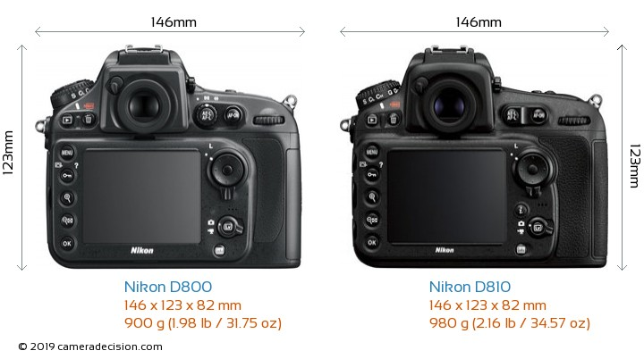 Nikon D800 vs Nikon D810 Camera Size Comparison - Back View