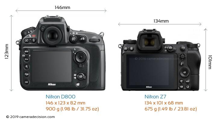 Nikon D800 vs Nikon Z7 Camera Size Comparison - Back View