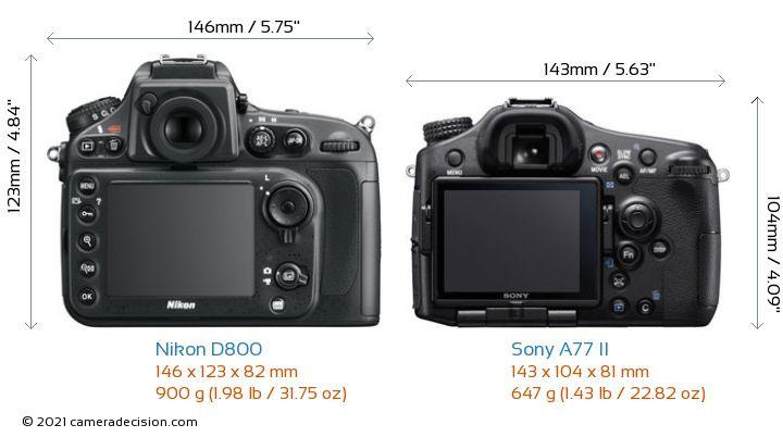 Nikon D800 vs Sony A77 II Camera Size Comparison - Back View