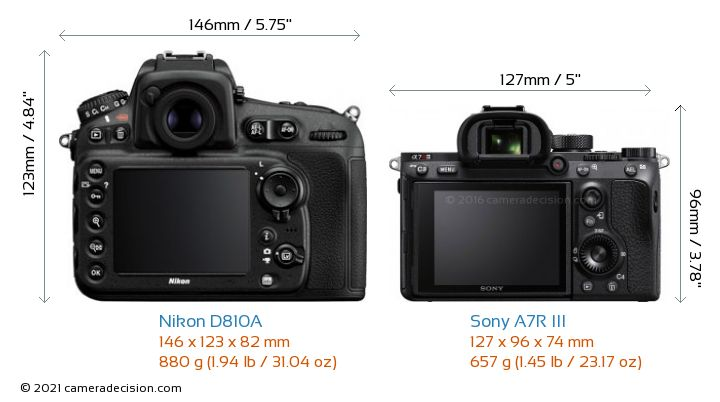 Nikon D810A vs Sony A7R III Camera Size Comparison - Back View