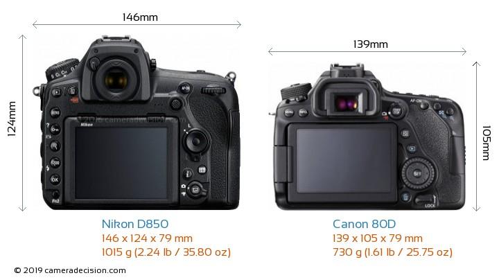 Nikon D850 vs Canon 80D Camera Size Comparison - Back View