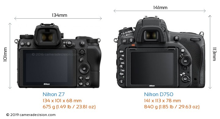 Nikon Z7 vs Nikon D750 Camera Size Comparison - Back View