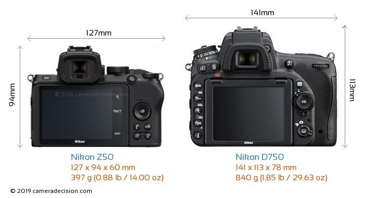 Nikon Z50 vs Nikon D750 Camera Size Comparison - Back View