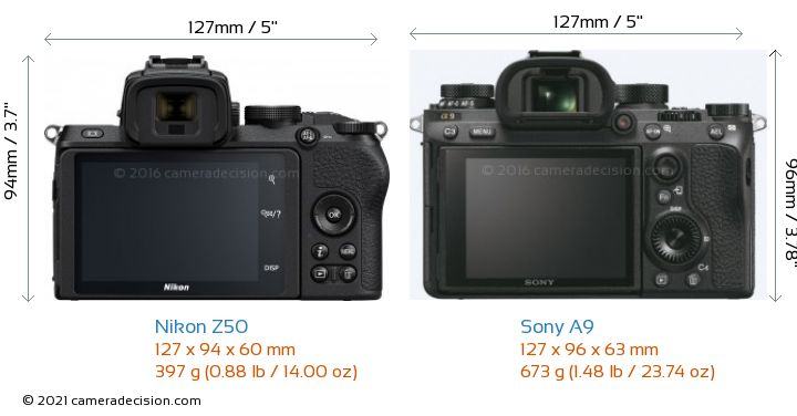 Nikon Z50 vs Sony A9 Camera Size Comparison - Back View