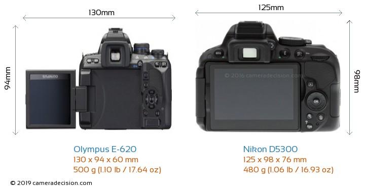Olympus E-620 vs Nikon D5300 Camera Size Comparison - Back View