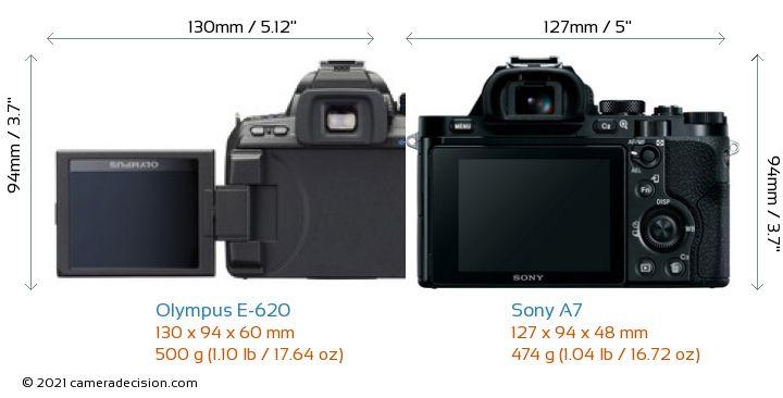 Olympus E-620 vs Sony A7 Camera Size Comparison - Back View