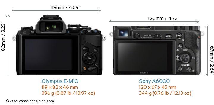 Olympus E-M10 vs Sony A6000 Camera Size Comparison - Back View