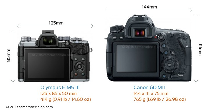Olympus E-M5 III vs Canon 6D MII Camera Size Comparison - Back View