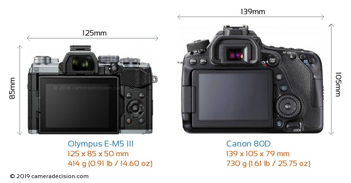 Olympus E-M5 III vs Canon 80D Camera Size Comparison - Back View