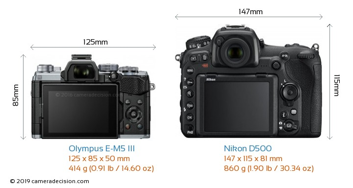 Olympus E-M5 III vs Nikon D500 Camera Size Comparison - Back View