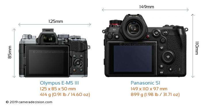 Olympus E-M5 III vs Panasonic S1 Camera Size Comparison - Back View