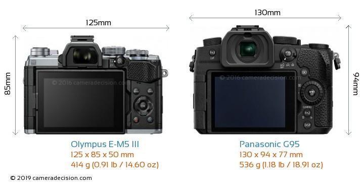 Olympus E-M5 III vs Panasonic G95 Camera Size Comparison - Back View