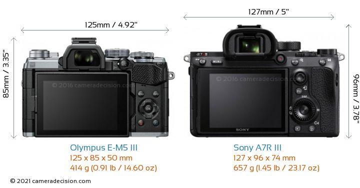 Olympus E-M5 III vs Sony A7R III Camera Size Comparison - Back View