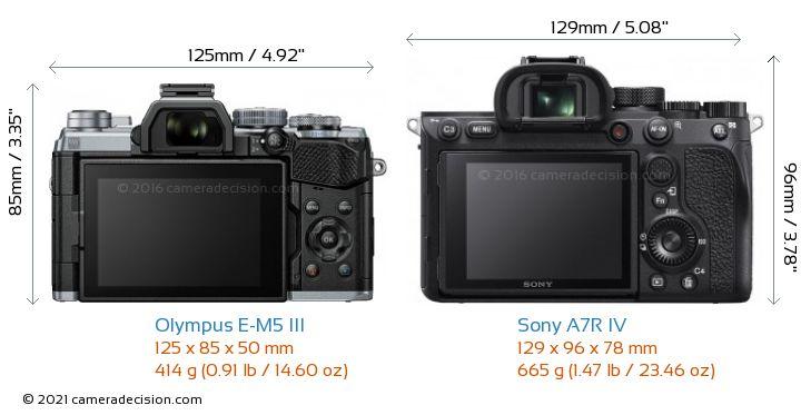 Olympus E-M5 III vs Sony A7R IV Camera Size Comparison - Back View