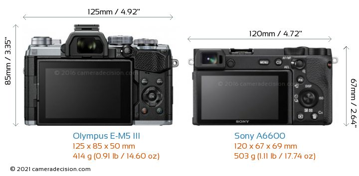 Olympus E-M5 III vs Sony A6600 Camera Size Comparison - Back View