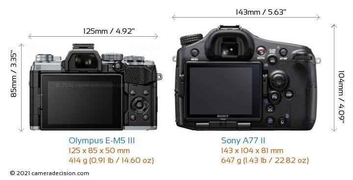 Olympus E-M5 III vs Sony A77 II Camera Size Comparison - Back View