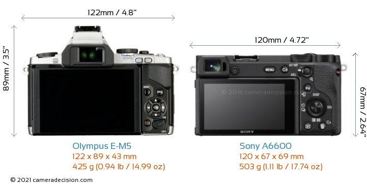Olympus E-M5 vs Sony A6600 Camera Size Comparison - Back View