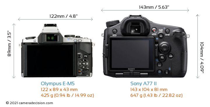 Olympus E-M5 vs Sony A77 II Camera Size Comparison - Back View