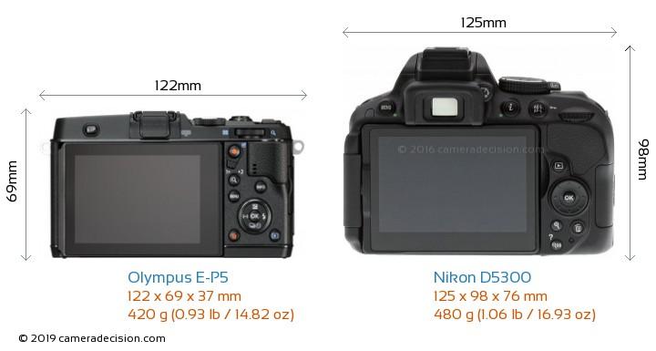 Olympus E-P5 vs Nikon D5300 Camera Size Comparison - Back View