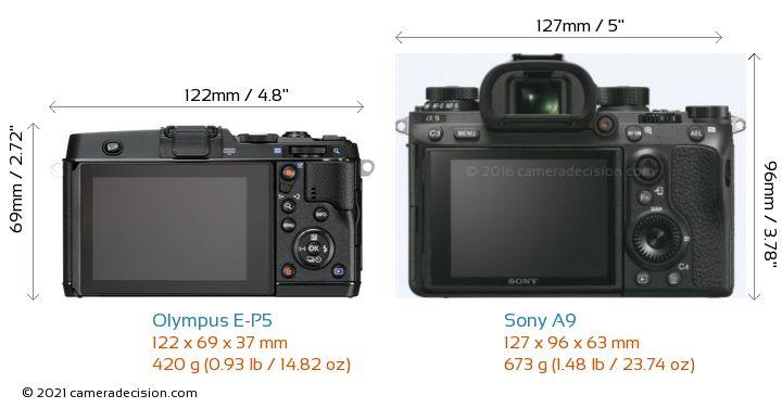 Olympus E-P5 vs Sony A9 Camera Size Comparison - Back View