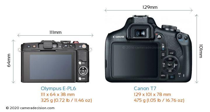 Olympus E-PL6 vs Canon T7 Camera Size Comparison - Back View