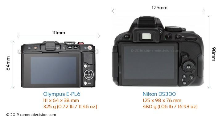 Olympus E-PL6 vs Nikon D5300 Camera Size Comparison - Back View