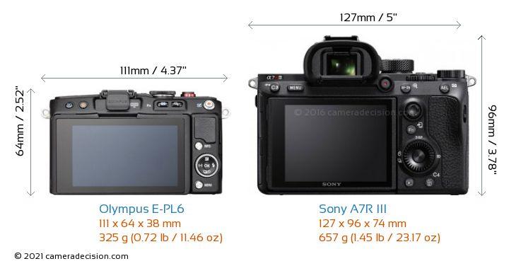 Olympus E-PL6 vs Sony A7R III Camera Size Comparison - Back View