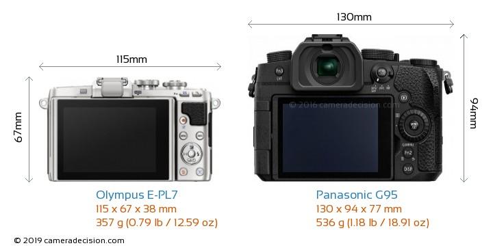 Olympus E-PL7 vs Panasonic G95 Camera Size Comparison - Back View