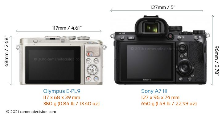 Olympus E-PL9 vs Sony A7 III Camera Size Comparison - Back View