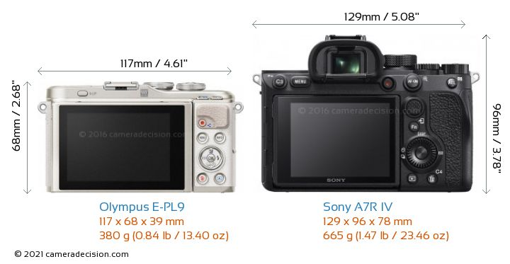 Olympus E-PL9 vs Sony A7R IV Camera Size Comparison - Back View