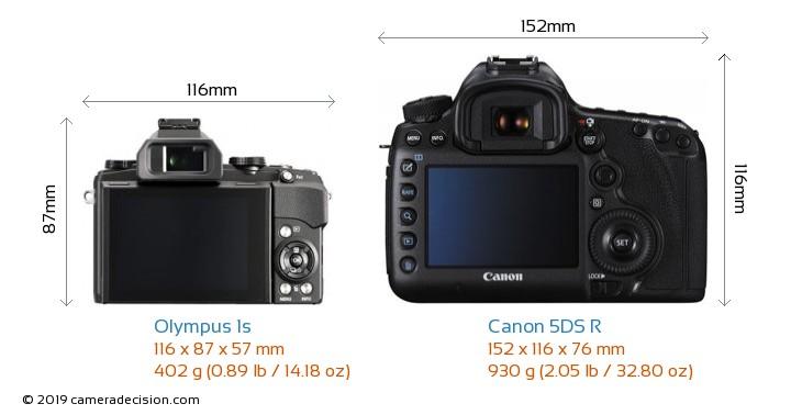 Olympus 1s vs Canon 5DS R Detailed Comparison
