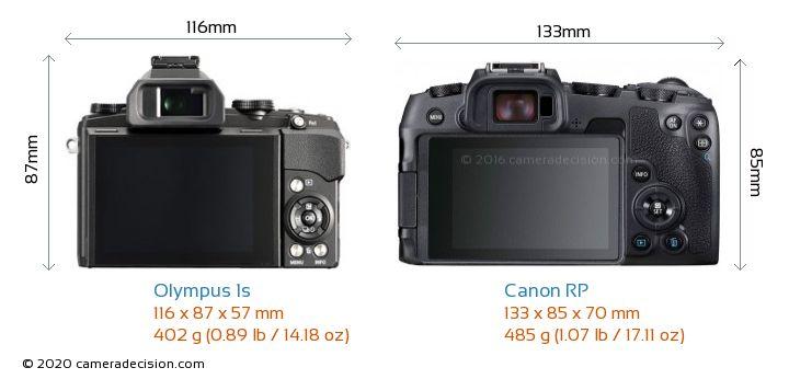 Olympus 1s vs Canon RP Camera Size Comparison - Back View