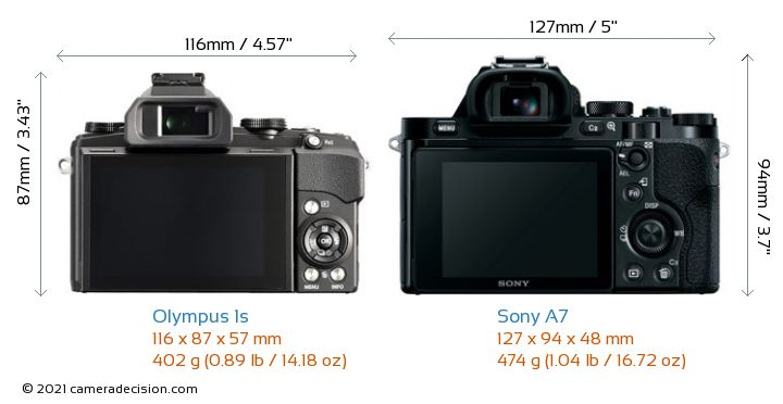 Olympus 1s vs Sony A7 Camera Size Comparison - Back View